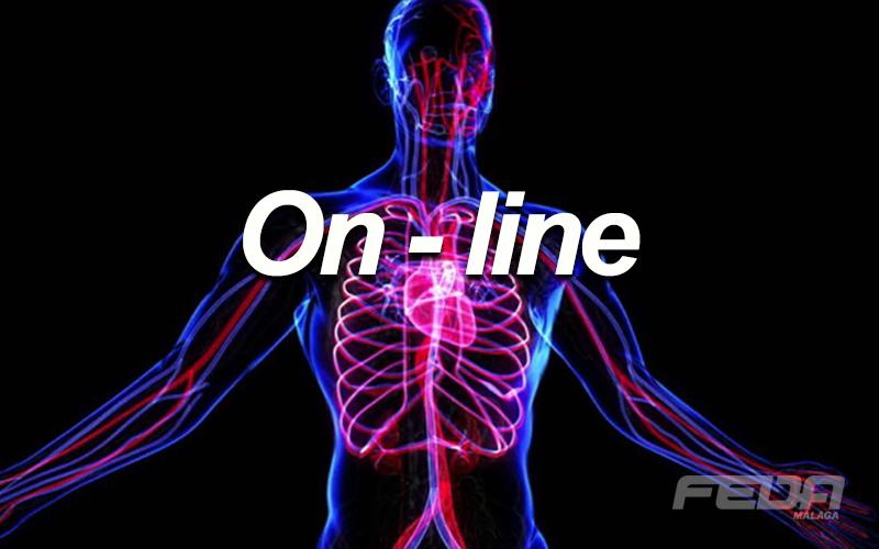3-online-fundamentos-fedamalaga-a