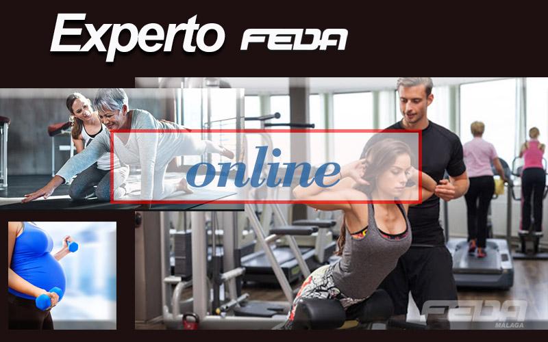 .online-fitness-modulo 5-feda-malaga