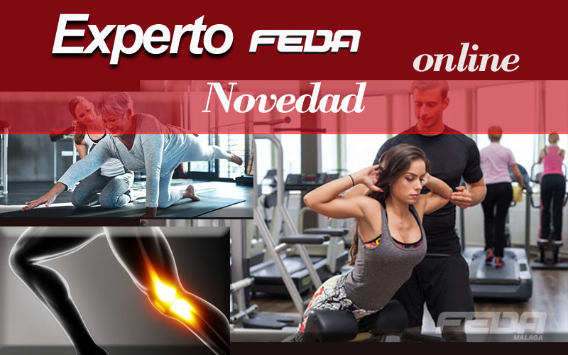 curso-online-m6-fitness-entrenador-personal-feda-malaga-a2